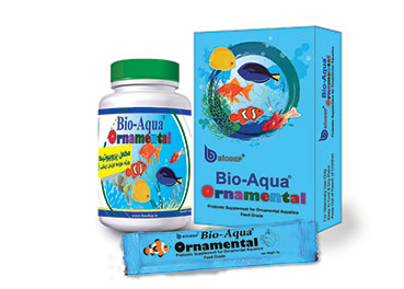 Feed grade probiotic for ornamental aquatics